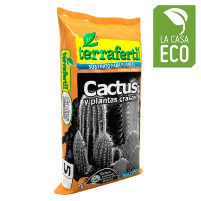 Cactus por 5 l