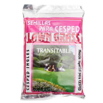 Semilla césped transitable lawn grass