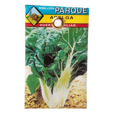 Semilla hortaliza acelga verde