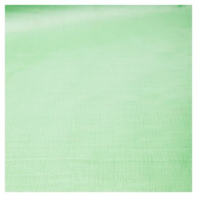 Rafia laminada verde 2 m