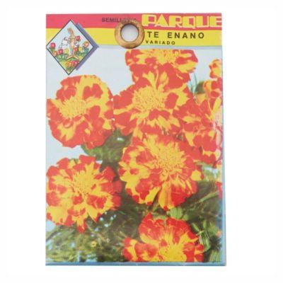 Semilla flores copete enano