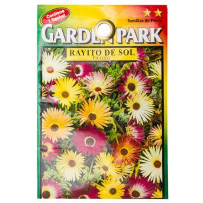 Semilla flores rayito de sol