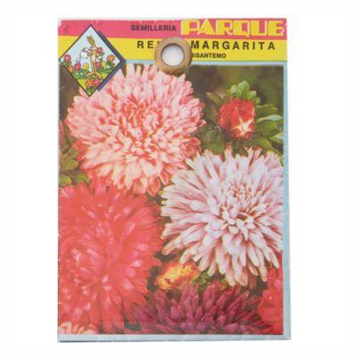 Semilla flores reina margarita