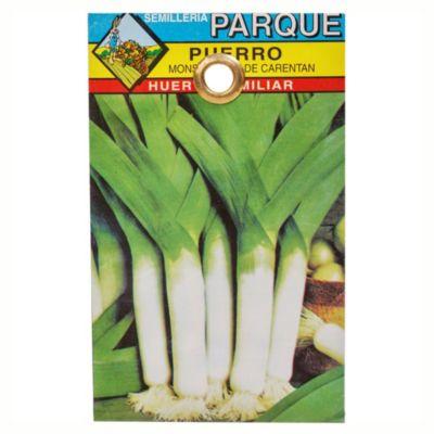 Semilla hortaliza puerro