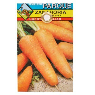 Semilla hortaliza zanahoria
