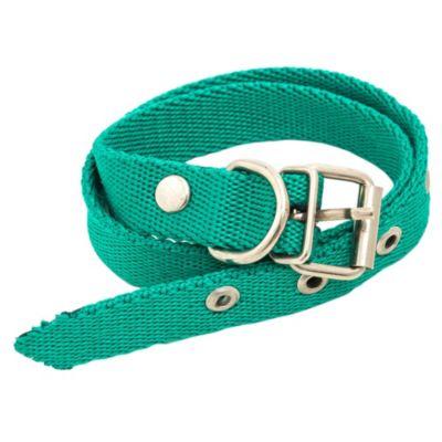 Collar n°5 talle 41-51 cm
