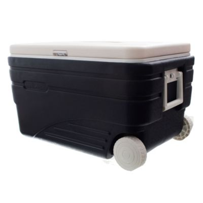 Conservadora cooler box
