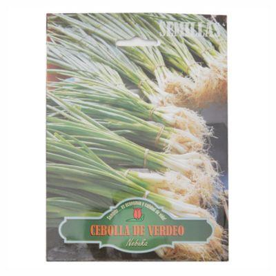 Semillas huerta cebolla de verdeo