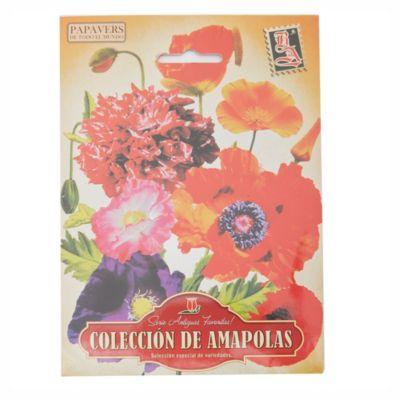 Semillas flores mezcla de amapola