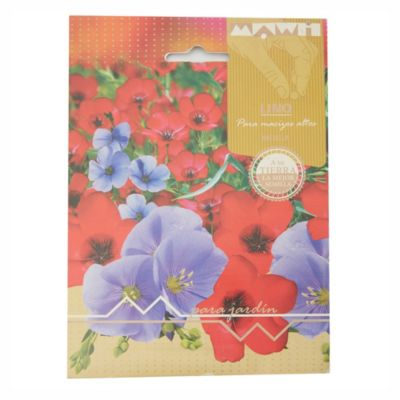 Semillas flores lino mezcla