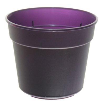 Maceta común 19 cm violeta