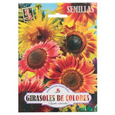 Semillas flores girasoles