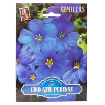 Semillas flores lino azul