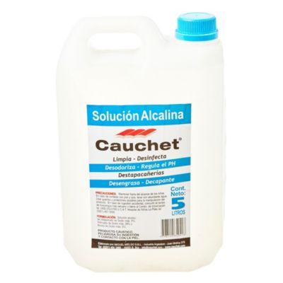 Solución alcalina 5 l