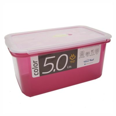 Caja para alimentos con válvula 5000 cc