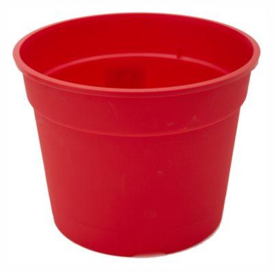 Maceta común 17 cm roja