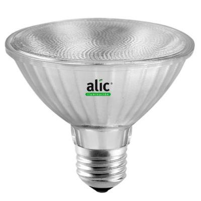 Lámpara LED PAR30 10 w luz día E27