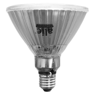 Lámpara LED PAR38 15 w luz cálida E27
