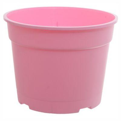 Maseta común 17 cm rosa