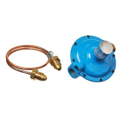 Regulador a gas de 1 flexible