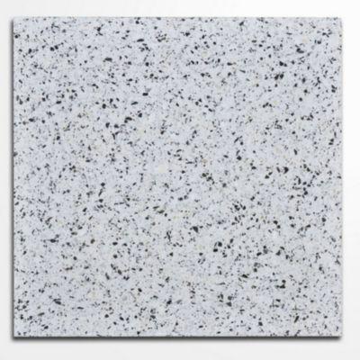 Baldosa granito 30 x 30 PS beige 0.54 m2