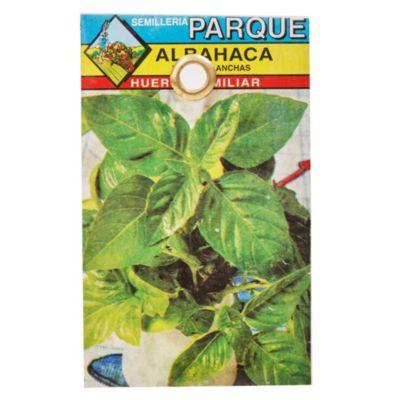 Semilla hortaliza albahaca verde