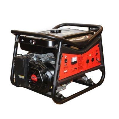 Generador 13 HP Arranque manual nafta