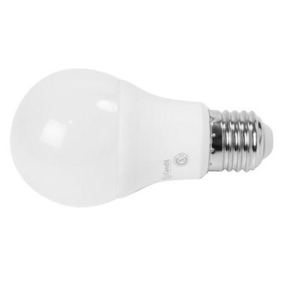 Lámpara LED común Dim 6 w cálida E27