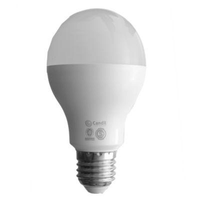 Lámpara LED 15 w E27 A 65 fría