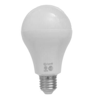 Lámpara LED 23 w E27 A 75 cálida