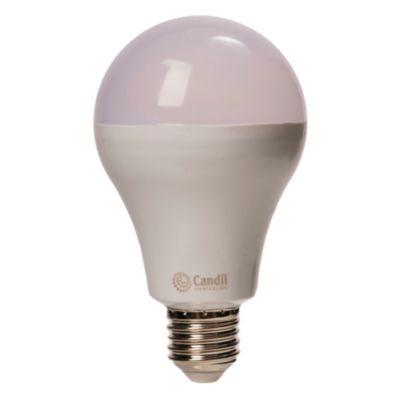 Lámpara LED 23 w E27 A 75 fría