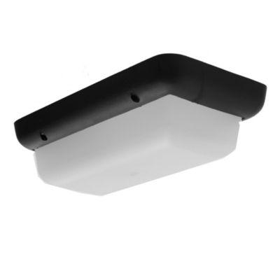 Tortuga rectangular de polipropileno