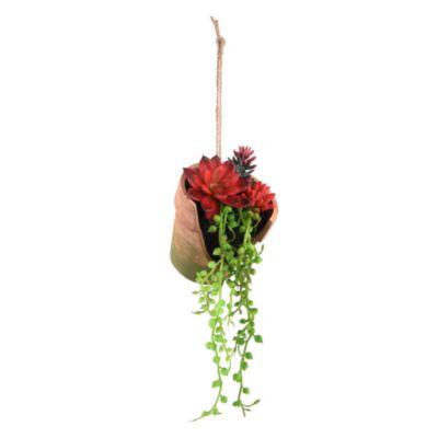 Suculenta con maceta colgante roja