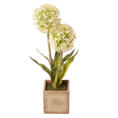 Flor allium maceta mad 43cm
