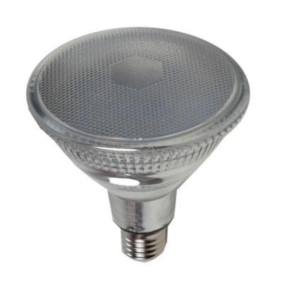 Lámpara LED PAR38 E27 14w Fría