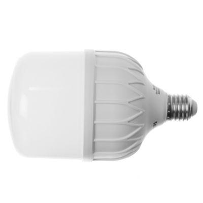 Lámpara LED TrueForce 30 w E27 Fría
