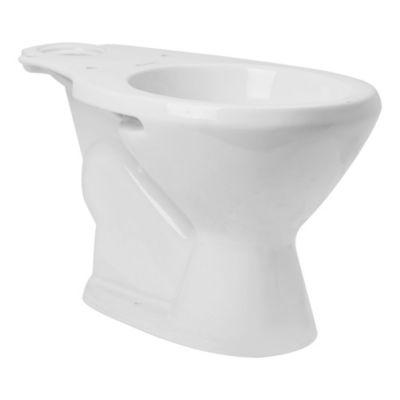 Inodoro Mayo largo blanco