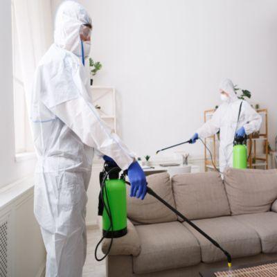 Servicio de sanitización y desinfección en Interiores  Covid-19 hasta 100 m2  -  (Caba y Gba )