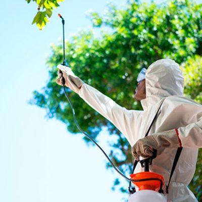 Sanitización y desinfección en Parques/Jardines hasta 100 m2 - (Caba y Gba)